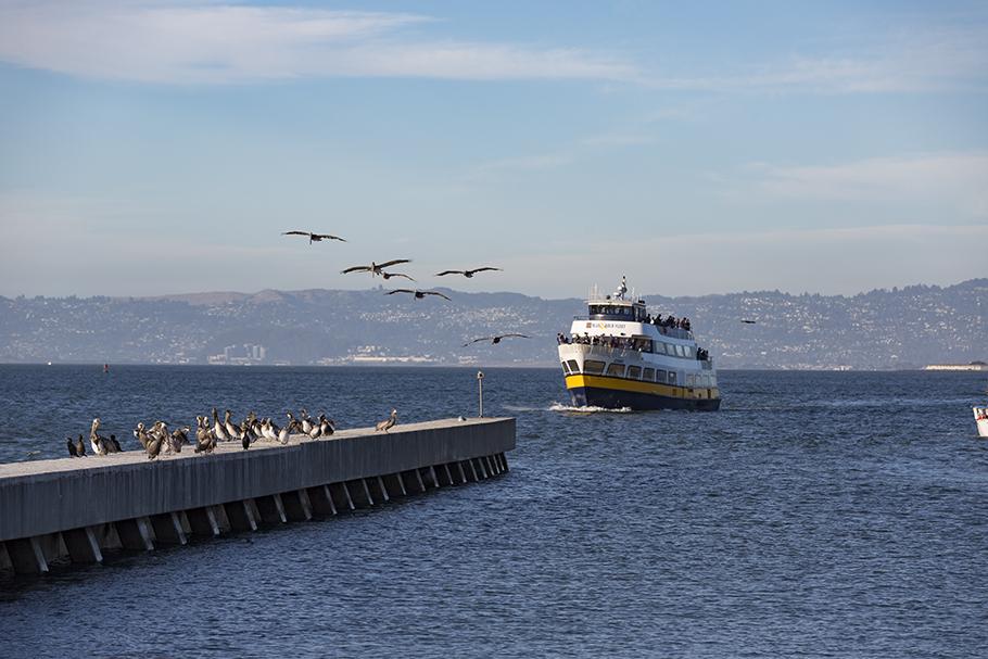 Pier 39, San Francisco, 2018